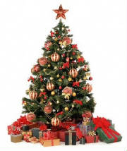 the-christmas-tree-4.jpg
